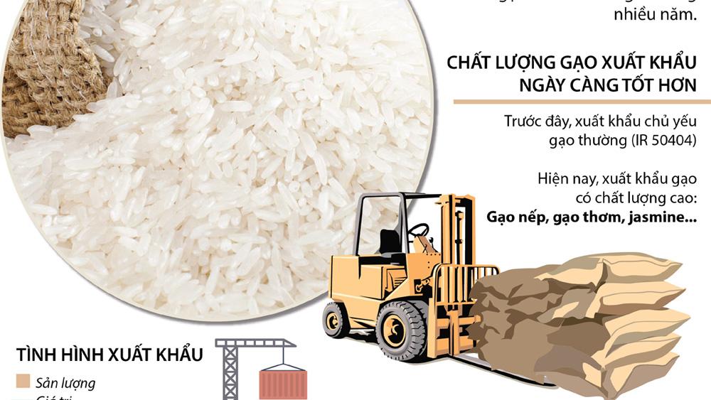 Xuất khẩu gạo Việt Nam đã chuyển từ lượng sang chất